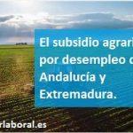 El subsidio agrario por desempleo de Andalucía y Extremadura